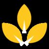 Plant-Based Antiseptic